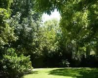 Giardini aperti nel Salento