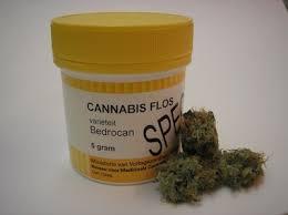 """Cannabis terapeutica, Conca: """"Donna colpita da sclerosi multipla riavrà farmaco"""""""